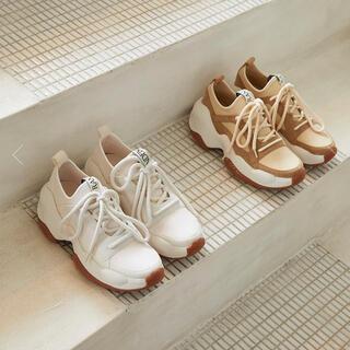 RANDEBOO RB basic sneaker beige