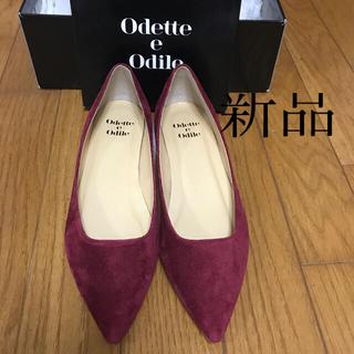 Odette e Odile - odette e odile新品🎶