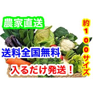 破格約100サイズ農家直送野菜詰め合わせ送料全国無料❗️(野菜)