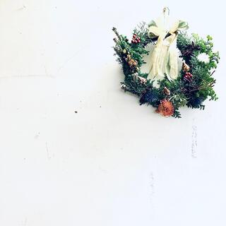 【完売・見本】スワッグ クリスマスリース プロテア 直径33cm(ドライフラワー)