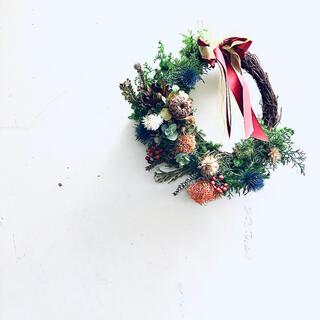 【完売】スワッグ クリスマスリース プロテア 直径35cm ネイティブフラワー(ドライフラワー)