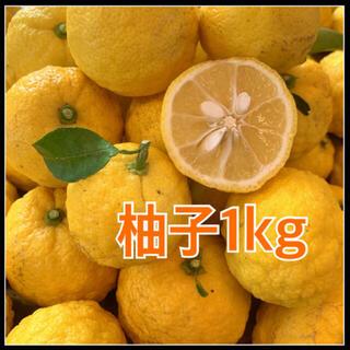 無農薬🍊柚子【1kg】宅急便コンパクト