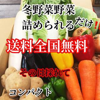 激安❗️農家直送野菜コンパクト入る分だけ詰めます送料無料(野菜)