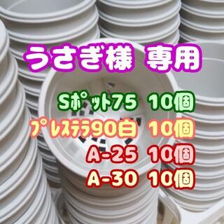 プラ鉢2.5号【A-25】10個 他 スリット鉢 丸 プレステラ 多肉植物(プランター)