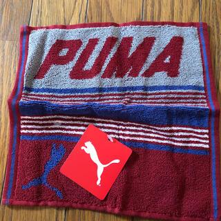 プーマ(PUMA)のPUMA  タオルハンカチ(ハンカチ/ポケットチーフ)