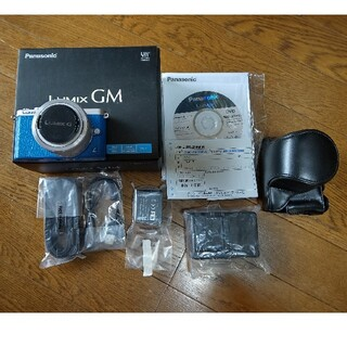 Panasonic - LUMIX GM DMC-GM1SK