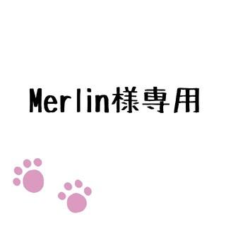Merlin様専用 棚(家具)