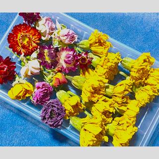 ドライフラワー花材セット(ドライフラワー)