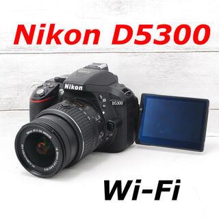 Nikon - ❤️シャッター回数わずか755枚❤️Wi-Fi&自撮り❤️Nikon D5300