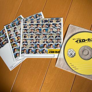 ハンシンタイガース(阪神タイガース)の阪神タイガース藤本敦士選手 大量の生写真のCD(スポーツ選手)