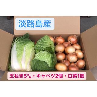 赤猫3様専用 淡路島 玉ねぎ 晩生 S〜Lサイズが5キロ・キャベツ2個・白菜1個(野菜)