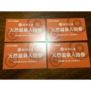 値下げ⭐︎ほてる大橋 温泉入浴券 3枚(その他)