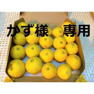 【かず様専用ページ】レモン果汁(500×10本)(フルーツ)