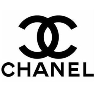 CHANEL - シャネル ポーチ 収納バッグ ノベルティ VIP限定