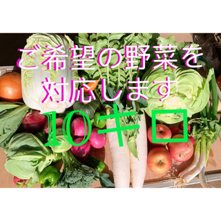 無農薬栽培新鮮野菜、蜜入りリンゴ付き(野菜)