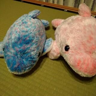 名古屋港水族館 イルカぬいぐるみ(ぬいぐるみ)