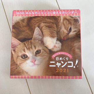 日めくりニャンコ☆2021カレンダー☆訳あり(カレンダー/スケジュール)