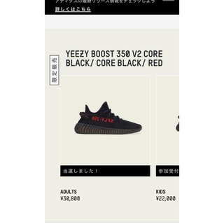 アディダス(adidas)のYEEZY BOOST 350 V2 CORE BLACK 28.5(スニーカー)