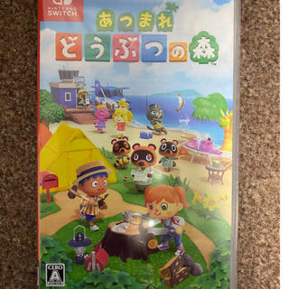 Nintendo Switch - どうぶつの森 Switch スイッチ