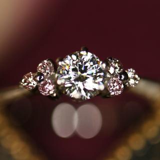 デビアス(DE BEERS)のブルーダイヤ様専用FOREVERMARK フォーエバーマークブラックレーベル(リング(指輪))