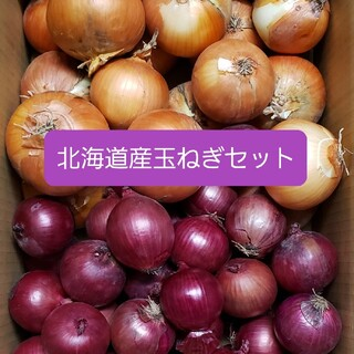 北海道産玉ねぎ+赤玉ねぎ【アーリーレッド】セット 各5キロ 約10キ(野菜)