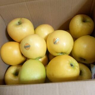 岩手県産 ご家庭用 シナノゴールド 箱込み5キロ(フルーツ)