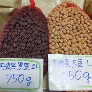 兵庫県産 丹波黒黒豆 750g 大豆  750g(野菜)