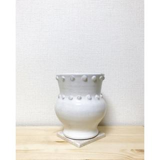 アッシュペーフランス(H.P.FRANCE)の最終値下げ🍋designers🍋新品 陶器のプランター アンスフィーヌ 白色(その他)
