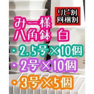 みー様 八角鉢(その他)