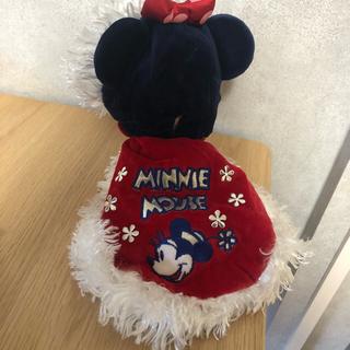 ディズニー(Disney)のペットパラダイス ディズニー 犬用服(ペット服/アクセサリー)