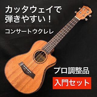 カッタウェイシェイプで弾きやすい!マホガニー材のコンサートウクレレ【入門セット】(その他)