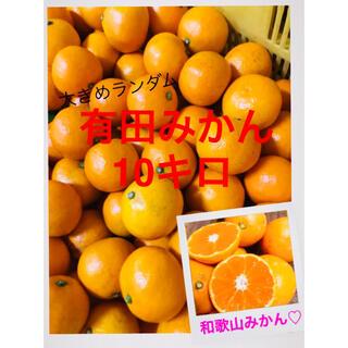 アリエル 様専用和歌山有田みかんM〜3L大きめランダム10キロ(フルーツ)