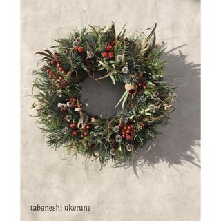 初冬の贈り物 シルバーブルーの針葉樹 ホプシーの シックなリース ドライフラワー(ドライフラワー)
