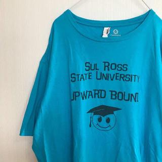 アンビル(Anvil)のアメリカ古着! Tシャツ anvil XXL ビッグサイズ 水色 青 メンズ (Tシャツ/カットソー(半袖/袖なし))