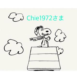 ピーナッツ(PEANUTS)のChie1972さま(ポーチ)