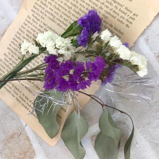 小分け スターチス パープル3種&ホワイト ドライフラワー 花材(ドライフラワー)