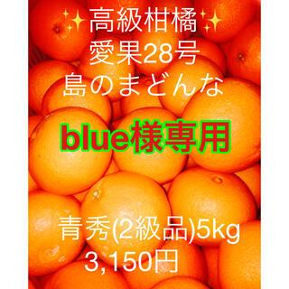 blue様専用 高級蜜柑  愛果28号 島のまどんな青秀(2級品)(フルーツ)