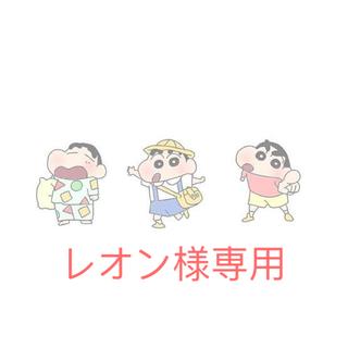 レオン様専用ページ(その他)