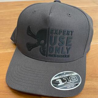 ペツル(PETZL)のrock exotica  Trucker Hat - Grey(登山用品)