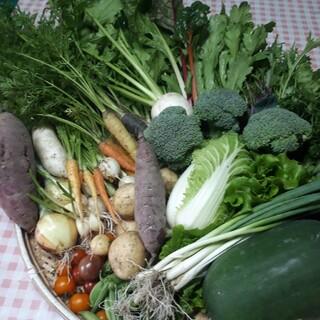 お任せお楽しみ野菜詰め合わせ80サイズ(野菜)