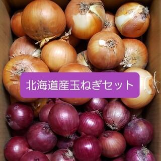 北海道産 赤玉ねぎ【アーリーレッド】+玉ねぎ 各5キロ約10キロ(野菜)