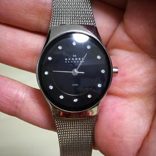 スカーゲン(SKAGEN)のスカーゲン シルバー 腕時計(腕時計)