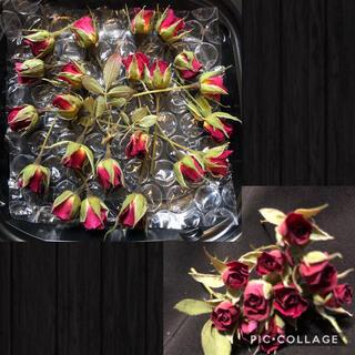 はるみ様専用★超ミニミニ薔薇20輪セット+おまけ2輪付き&ボールペン用花10輪(ドライフラワー)