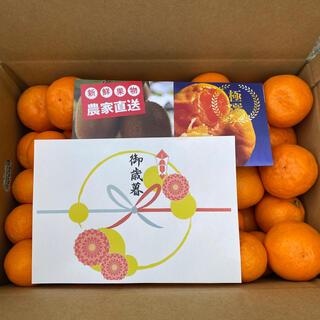 るんるん様専用 和歌山県産ゆら早生みかん赤秀S5kg 4箱(フルーツ)