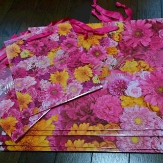 エミリアウィズ(EmiriaWiz)の⭐エミリアウィズ 紙袋&クリアファイル⭐(ショップ袋)