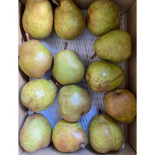 減農薬栽培山形産 ラフランス バラ詰め M玉 小玉などお箱込み3キロ入り(フルーツ)