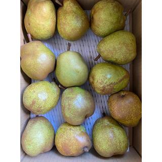 減農薬栽培山形産 ラフランス バラ詰め M玉 お箱込み3キロ(フルーツ)