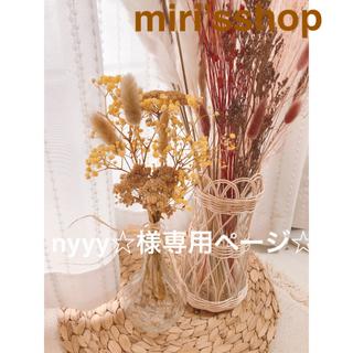 パンパスグラスセット nyyy☆様専用ページ☆(ドライフラワー)