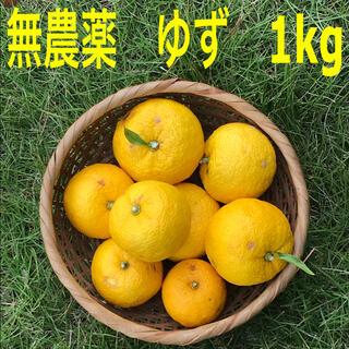 無農薬 埼玉県産 柚子ゆず1kg(フルーツ)