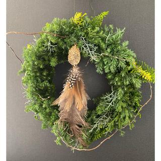 アクタス(ACTUS)のfeather wreathe ☆.。.:*☆  ①(リース)